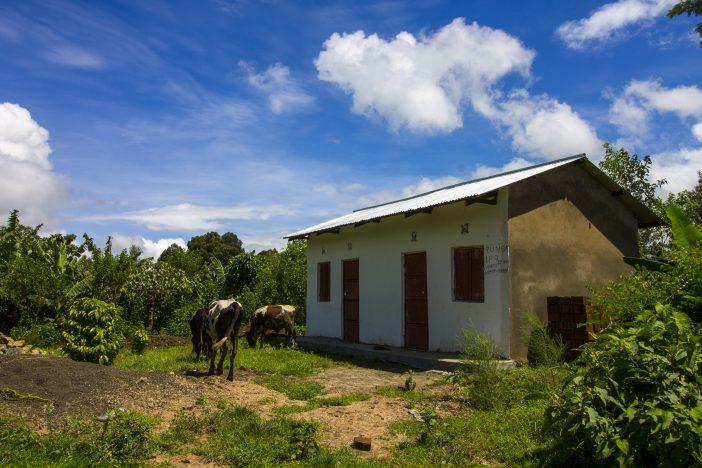 Arusha House
