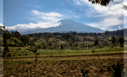 Mount Meru Hike + Tanzania Education