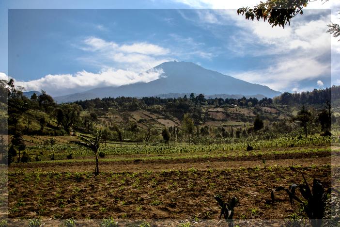 Mount Meru Hike + Tanzania Education
